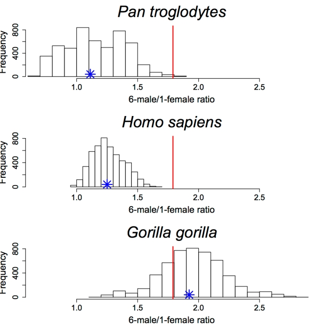 Dimorphism ratios copy