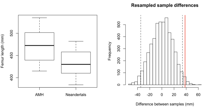 Left: Femur lengths of anatomically modern humans (AMH) and Neandertals. Right: distribution of resampled group differences. Dashed lines bracket 95% of the resampled distribution, and the red line is the observed difference between AMH and Neandertal femur lengths. Only about 1% of the resampled differences are as great as the observed fossil difference.
